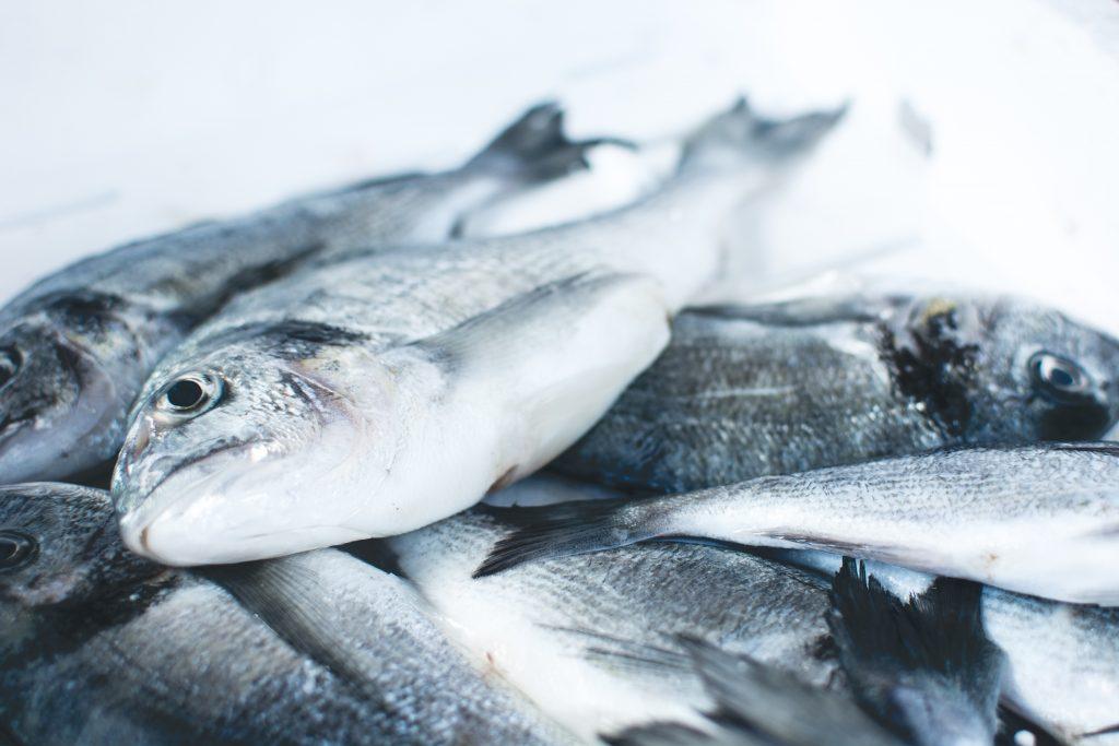 Des poissons sur un étal avec de la glace